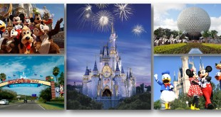 20 top most checked in places in 2015 Disney Properties